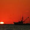 """""""Topsail Trawler 3"""""""