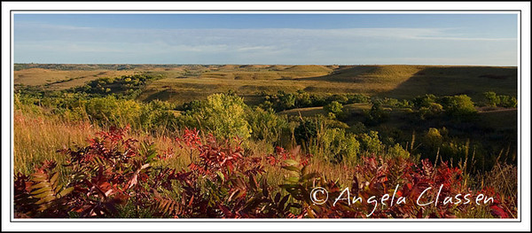 Bright sumac and golden grasses signal fall's arrival in the Flint Hills near Tuttle Creek Dam, Manhattan, Kansas