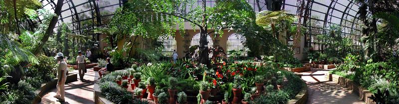 Balboa PArk Fern Arboretum interior Panorama