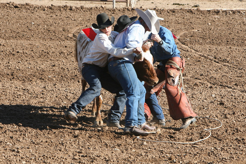 Rodeo, Phoenix, Arizona, USA