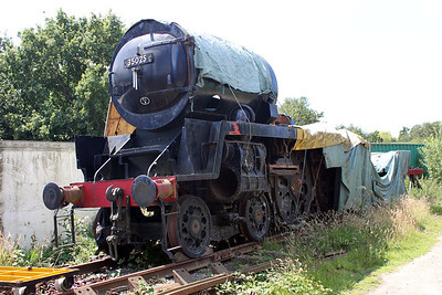 Steam 35025 at Sellinge Farm