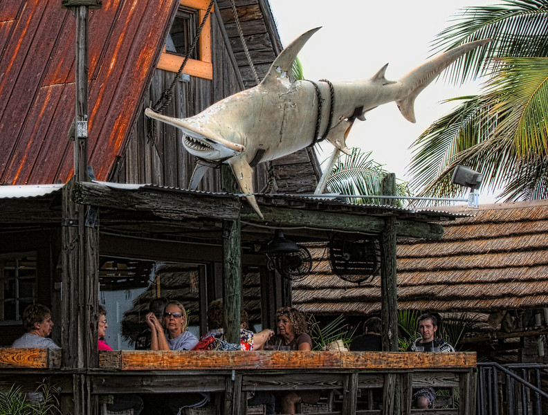 Hammerhead shark at restaurant, John's Pass, Florida. Photo developed using Color Efex Pro 3.0 and Topaz Filders.