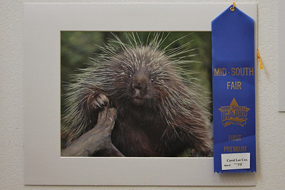 First place winner in Nature Category, Mid-South Fair,  photo by Carol Cox