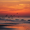 "First place winner of Delta Fair photo contest, category ""nature"".   This photo was taken during sunrise at the beach in Destin Flordia.  Photo by Carol Cox"