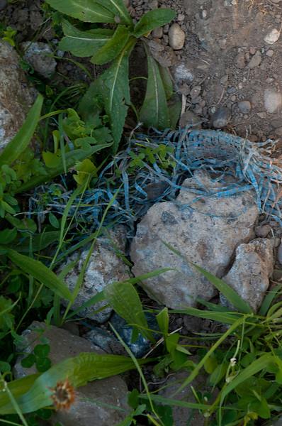 blue plastic tarp and cement