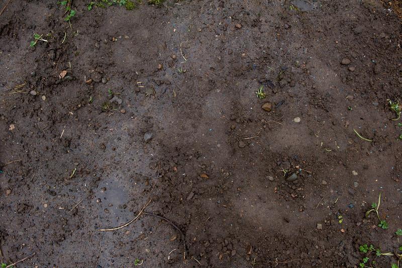 Original soil from original garden