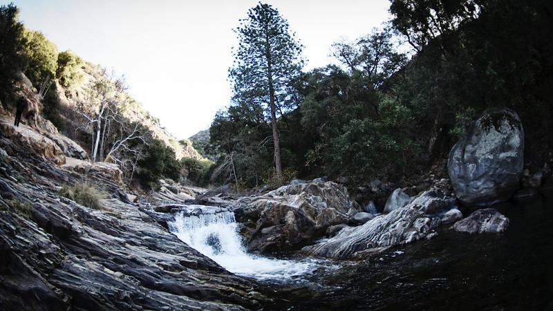 Sequoia2 54