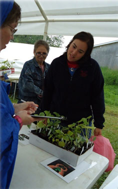 Return to the Good Life Community Farm where VISTA Carl Butterfield works.