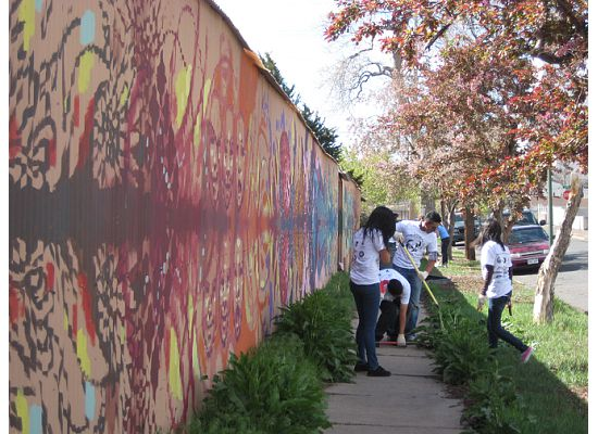 Volunteers participate in the Students in Action Service Day in Denver, CO.