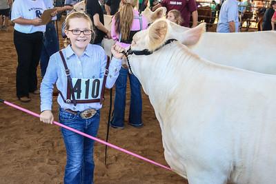 Junior Livestock Show