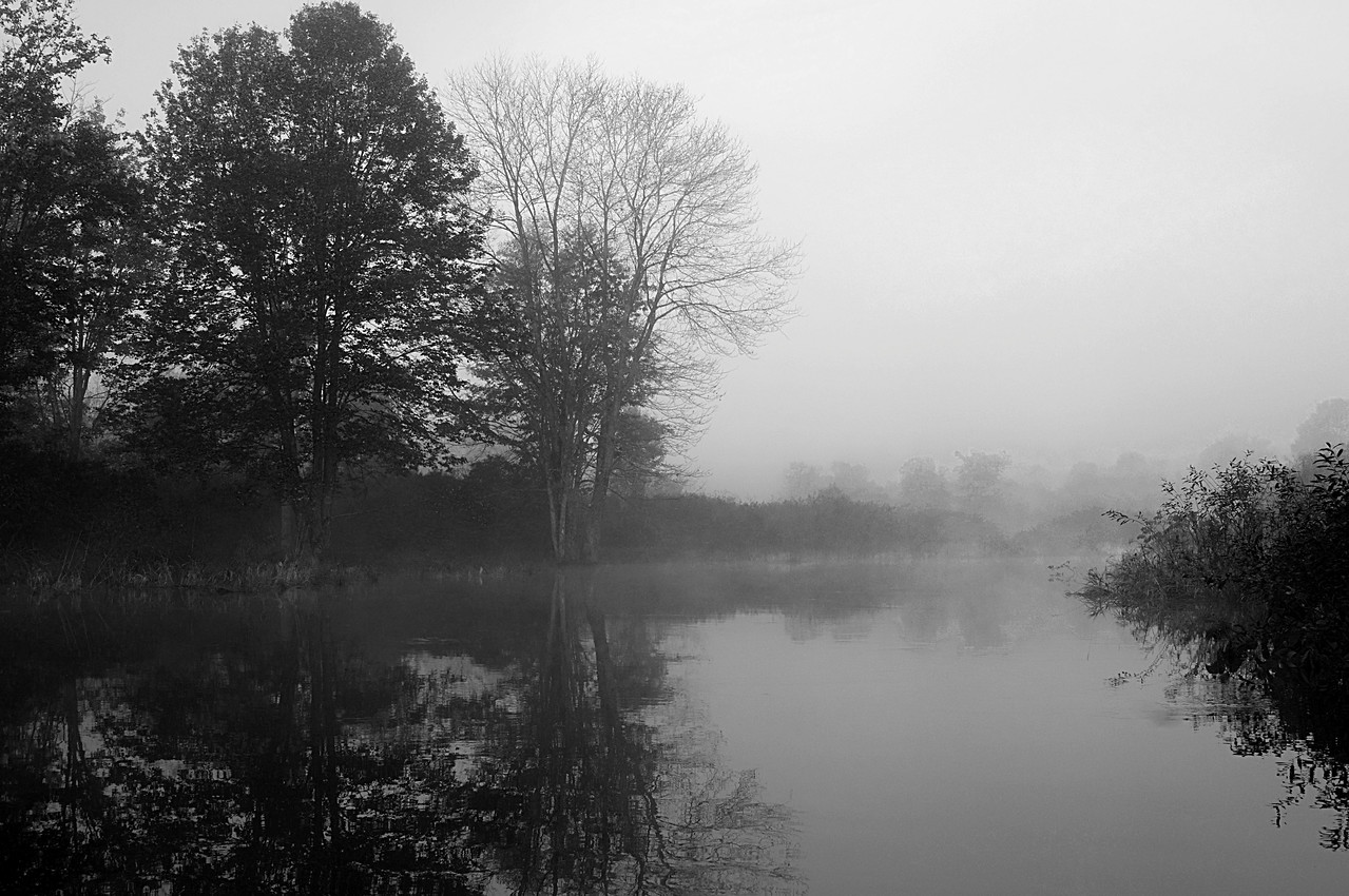 Nine Mile Mists - Lifting the Veil<br /> This is a black and white version while the next photo is the same, but with color.  Location is Nine Mile Swamp, Hubbardsville, NY