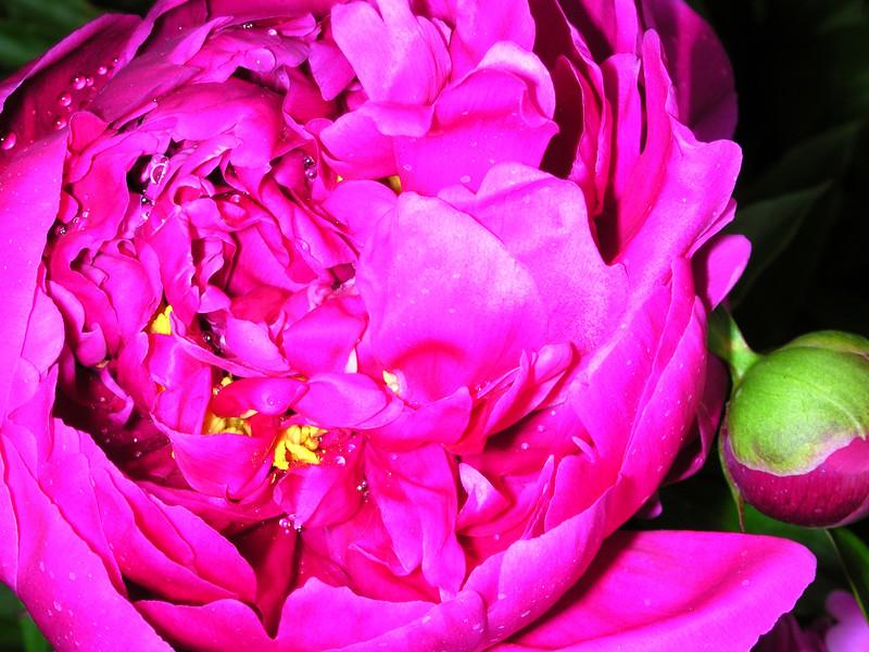 """//shankargallery.blogspot.com  <a href=\""""http://shankargallery.blogspot.com\"""">shankargallery.blogspot.com</a>"""