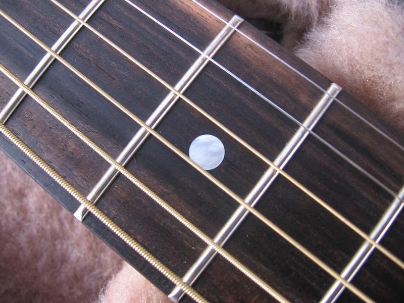 Close-up: fingerboard