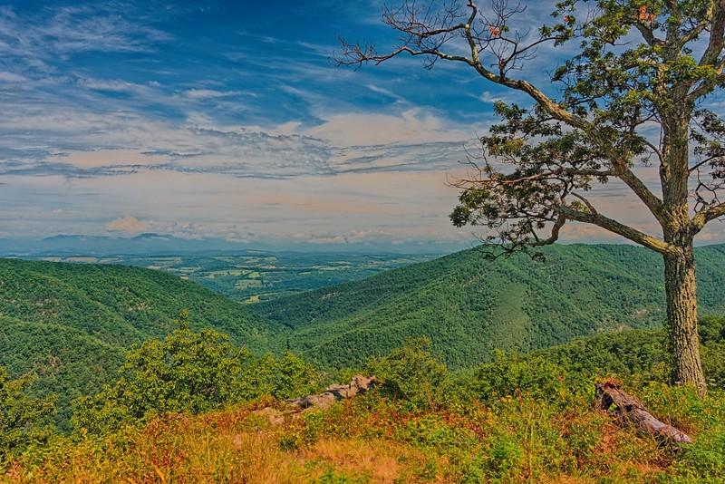 Irish Creek Valley Overlook, Blue Ridge Parkway in Virginia