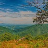 Irish Creek Valley Overlook, Blue Ridge Parkway in Virginia