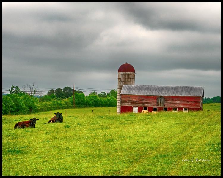 Laying down on the job - Arthur Farm