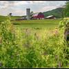 Farm on VA Highway 712 (Plank road)