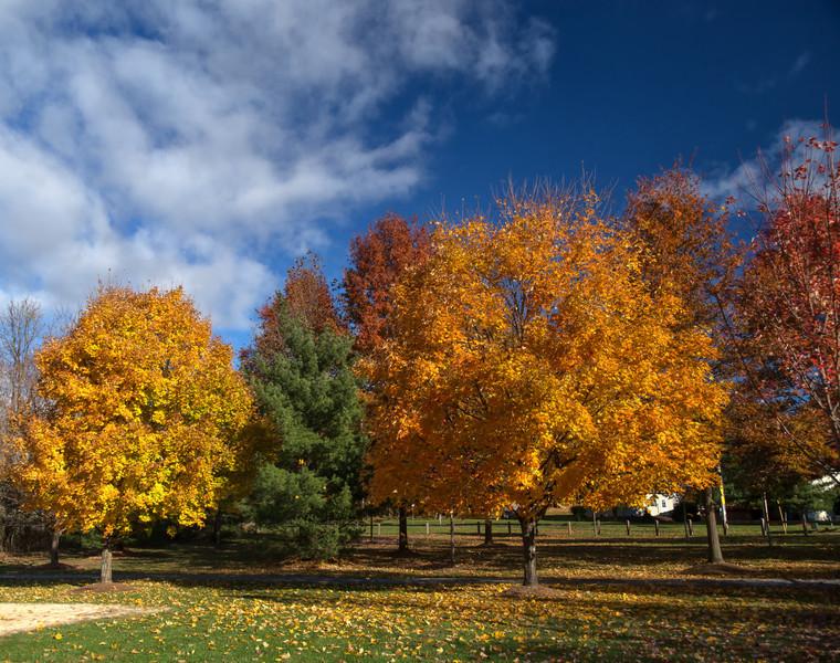 Libertyville Park