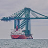 Zhen Hua 11 delivers 4 new container cranes from Shanghai to SIngapore 2013
