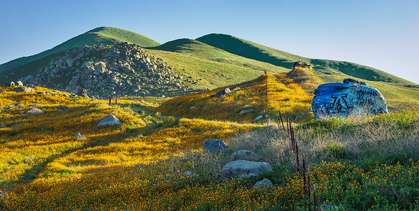Bear Mountain Wildflowers Fence Green Hills California