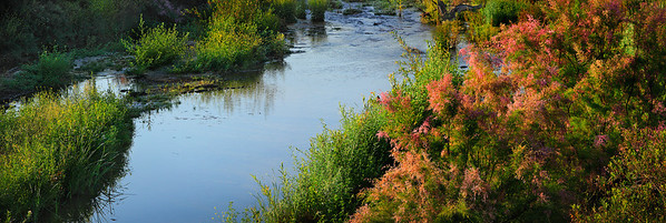 Piru Creek in the spring time, ventura county, California