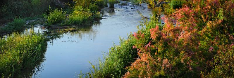 Piru Creek in the spring time, ventura county, California