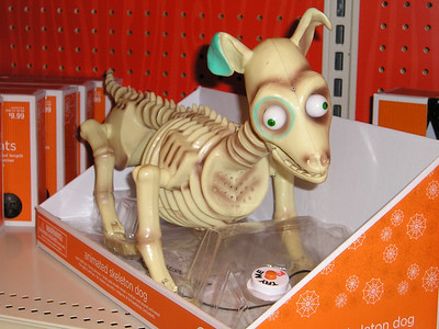 Ooooh, how sweeeet, a little halloween skeleton dog to cuddle with at night!