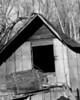 Barns2 035