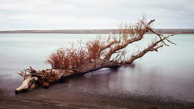 Lake Ferry  - Landscape
