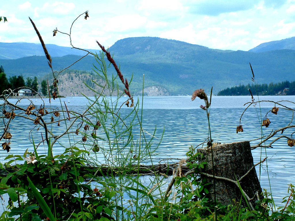 Shuswap