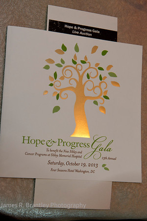 Sibley Hope and Progress Gala
