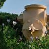 Hydrant Crop