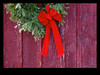 Christmas wreath on old shed - St Jacob's Ontario, December 22, 2012