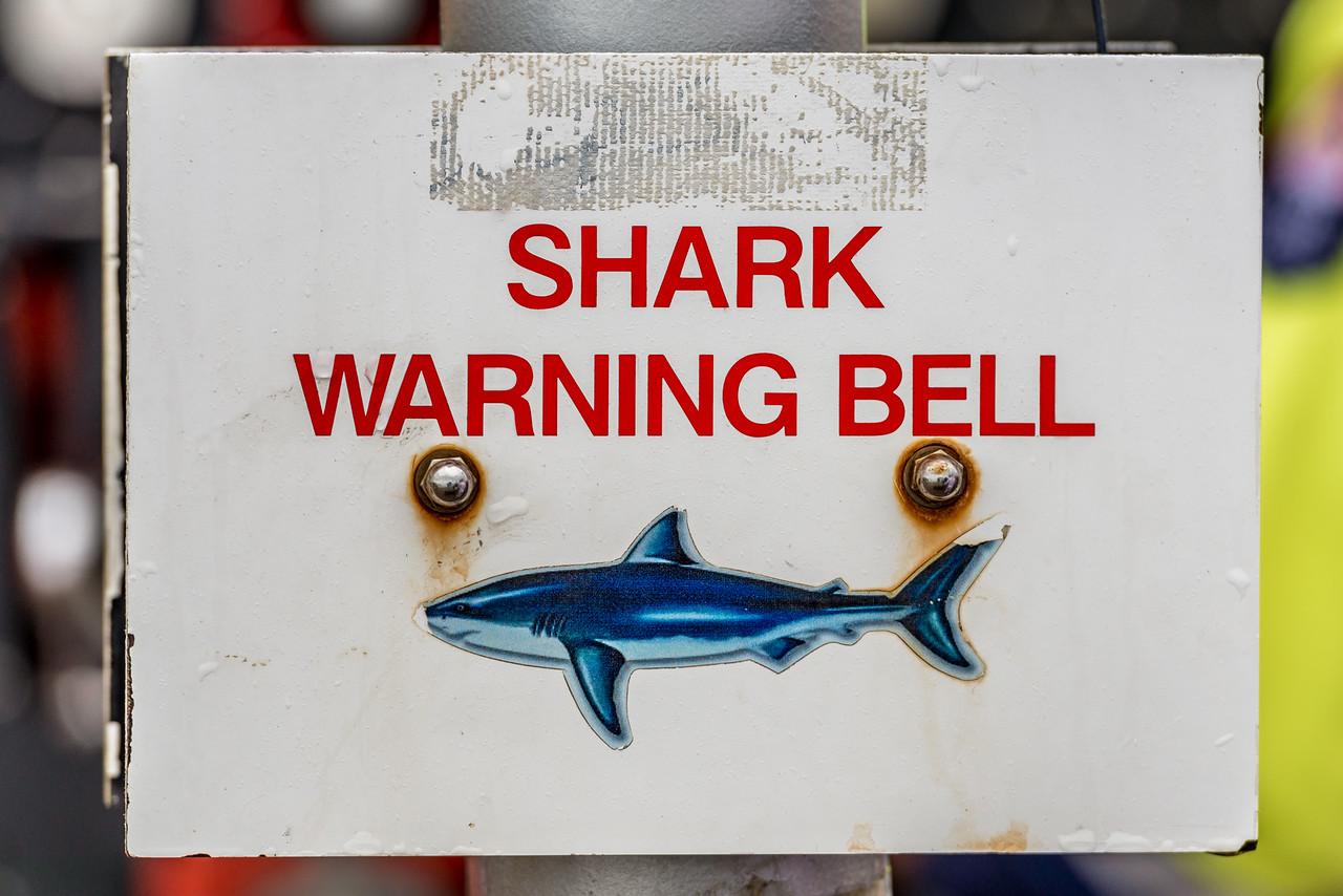 Shark warning bell. Saint Clair, Dunedin