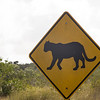 Panther Crossing in the Florida Everglades National Park.