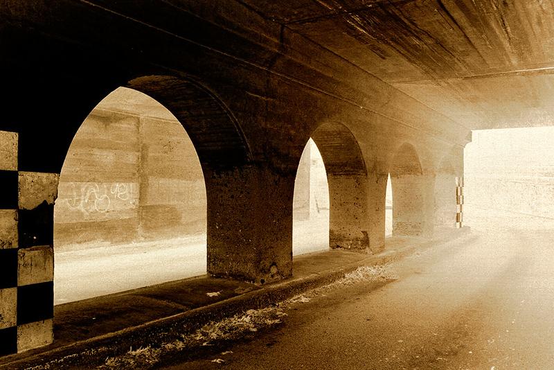 Emergence<br /> ©2006 Peter Aldrich
