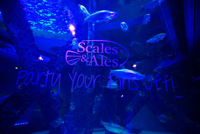Scales and Ales 2013