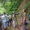 Fuglekikkere / Birdwatchers<br /> Madeira, Portugal 30.6.2018<br /> Sony Xperia mobilkamera