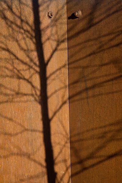 Skygge mot rusten jernplate<br /> Gullaug, Lier 13.2.2021<br /> Canon EOS R5 + RF24-105mm F4 L IS USM<br /> @ 105 mm