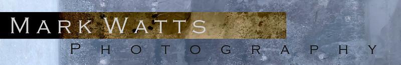 MWP Logo V6 copy