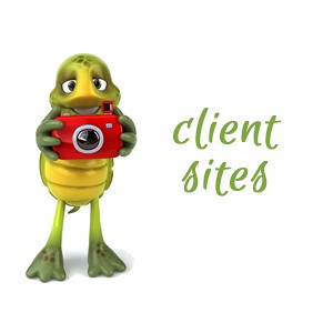 Client Sites