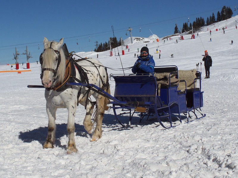 No cars are allowed in Avoriaz.  During the winter, a horse drawn sleigh is the Avoriaz version of a taxi.