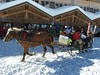 A sleigh is a necessity to transport one's ski gear and luggage from the parking garage to the apartment.  Horses are outfitted with poop bags, so the only trail they leave is a clean track in the snow!