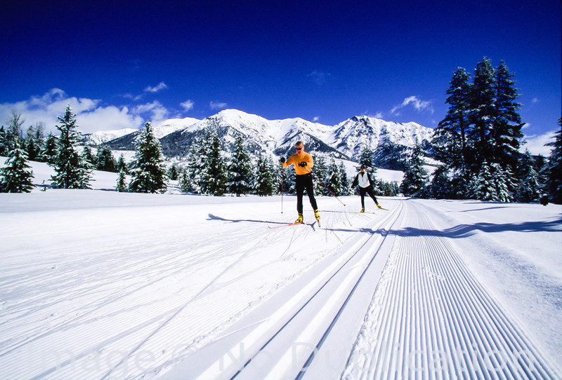 Nordic skiers in the Wood River Valley