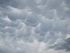 Mammatus Clouds, Looking to the South South East from our back yard.