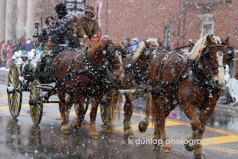 """12.08.10 = """"Bells on Bob's tail ring…."""" <br /> <br /> Okay, this could turn any Scrooge into a Believer!  What could be more festive than the Carriage Parade down Main Street in Lebanon, Ohio?  I just love all the Christmas traditions and the Carriage Parade is one of them.  Hot chocolate with homemade peppermint marshmallows while watching a team of horses come down Main Street.  Gotta' love it! <br /> <br /> """"…jingle all the way…"""""""