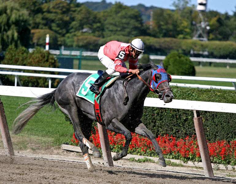 2nd Race - Cherokee Bull comes down the stretch