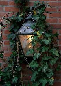 Lamp and ivy on Galena building.