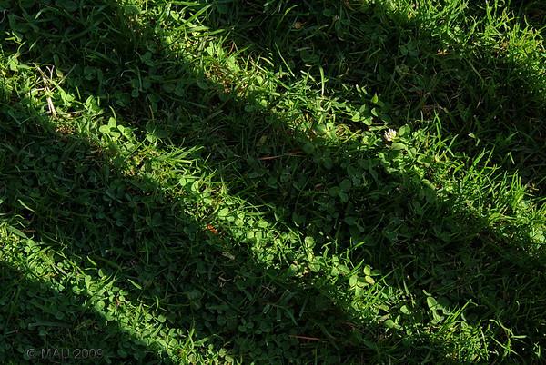"""""""Césped ondulado"""" - Es una nueva técnica que estoy experimentando en el jardín. Como casi la mitad de la superficie está a la sombra gran parte del día, se mantiene mejor la humedad y se aprovecha más el agua. Lo malo es que hace falta una segadora especial y son bastante caras.  ;-)<br /> Si no ves bien el efecto, entorna un poco los ojos. En la realidad, parte de la sombra del respaldo de un sillón que suele estar junto a la piscina.<br /> <br /> """"Undulating lawn"""" - It is a new technique that I am experimenting for my yard. As about half of the surface is on shade during most of the day, humidity is better maintained and water is better used. The only bad thing is that I will need a special lawnmower that is quite expensive. ;-)<br /> If you don't see well the undulating effect, try closing your eyes about half way. In reality, it is part of the shadow of the back of a big chair that is usually next to the pool."""