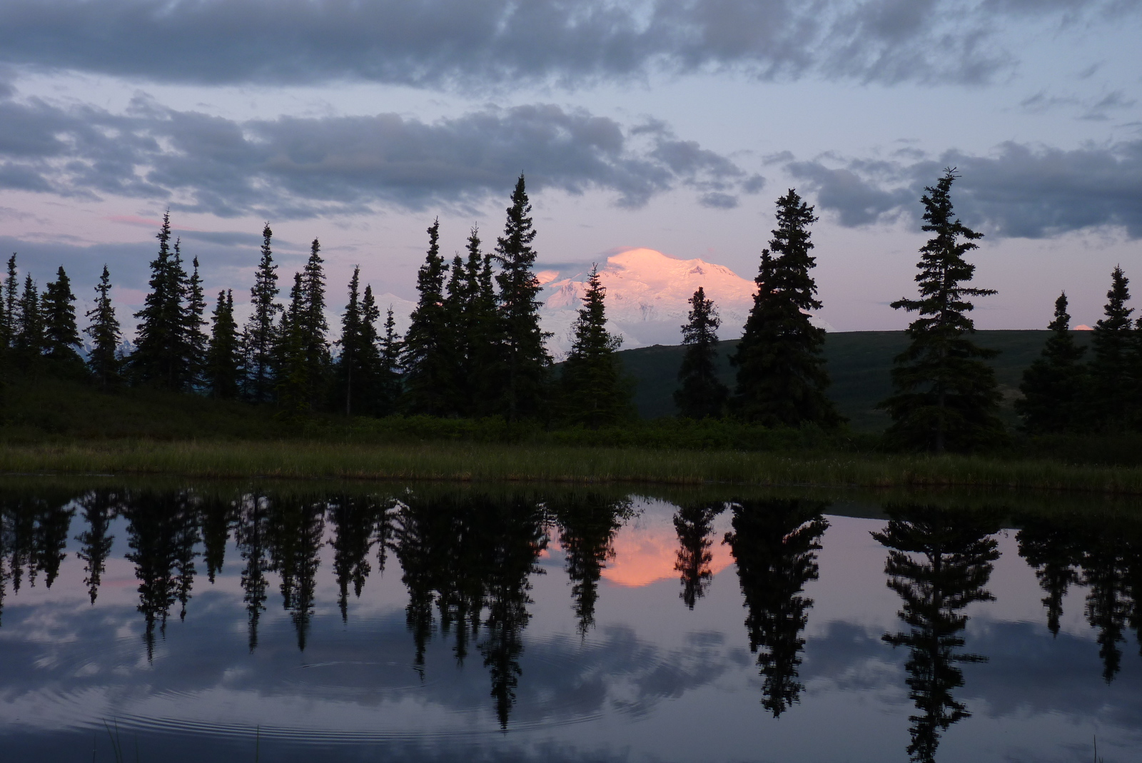 This is why we love staying at Camp Denali.